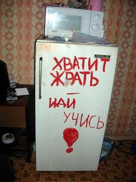 Прикольные картинки про холодильник