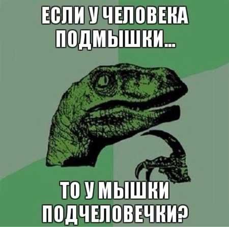 Смешные картинки с вопросами