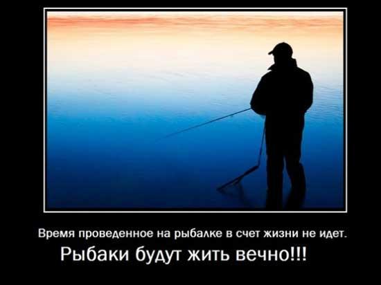 Афоризмы про рыбу фото 45-327