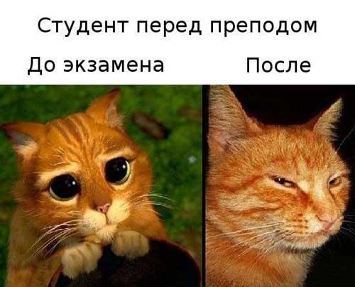 studencheskie_kartinki03