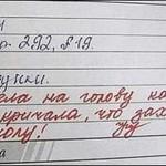 Прикольные записи в дневниках — фото