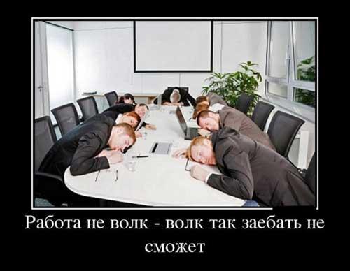 Приколы про работу