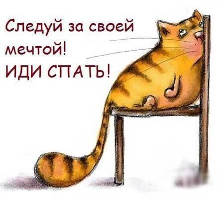 http://razvlecuxa.ru/wp-content/uploads/2015/11/spat_pora_02.jpg