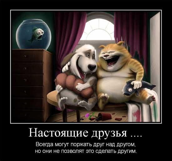 Прикольные картинки про дружбу